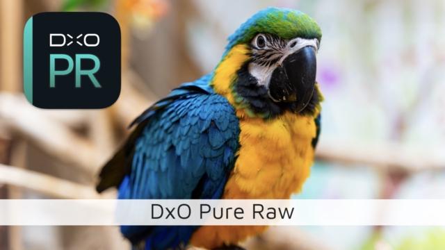 DxO PureRaw